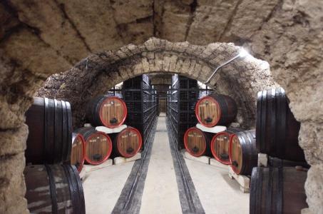 Record al ultimilor opt ani. Suntem lideri in UE la cresterea productiei de vin